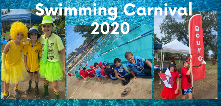 students attending the swimming carnival