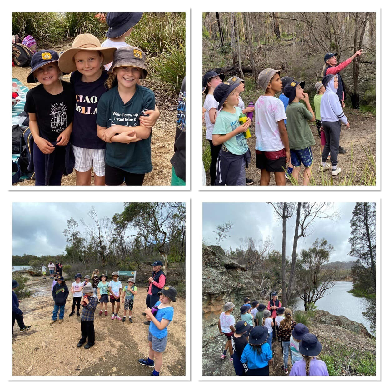 Stage 2 excursion to Dunn Swamp